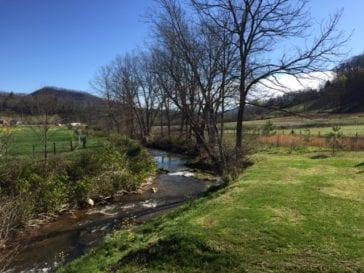 Riparian Boundary along Sandy Mush Creek