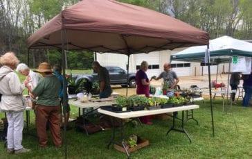 Garden Swap Tent Area with plants