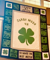Sandy Mush 4-h club quilt