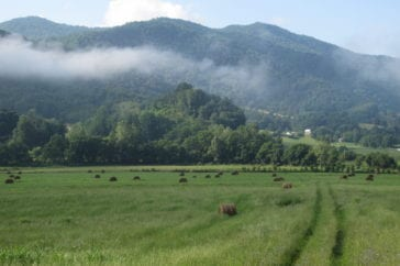 conserved farmland with hayfield with mountains and bard in background, farmland conservation in sandy mush, nc